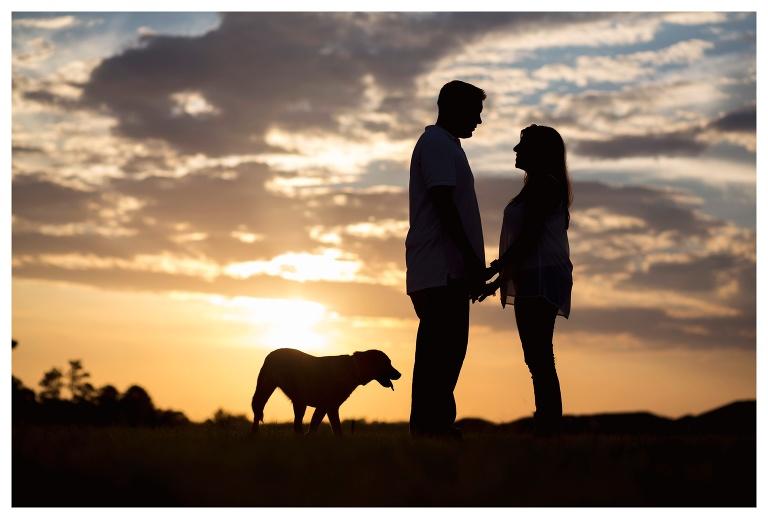 Avalon Park Dog Photographer